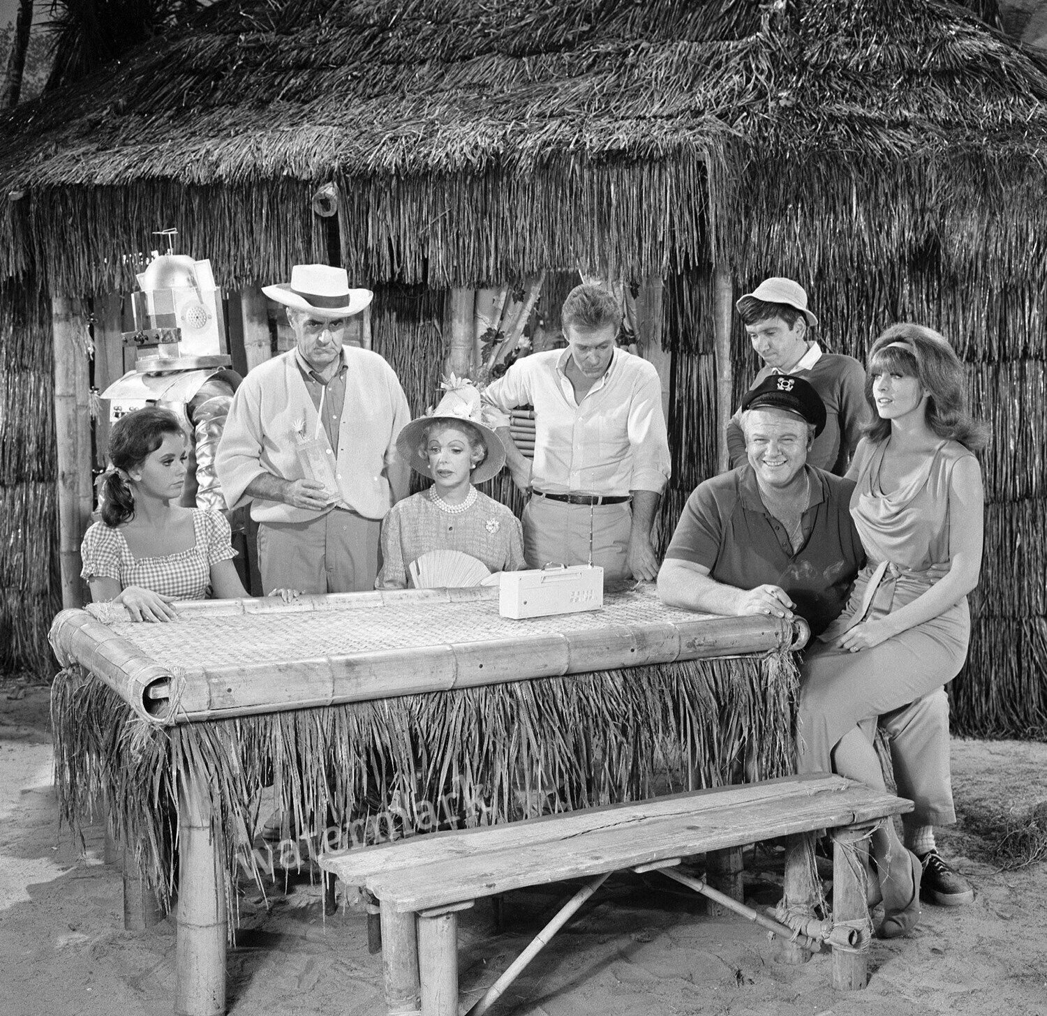 Name:  Gilligans-Island-Tv-Show-Group-Full-Cast-Sitting.jpg