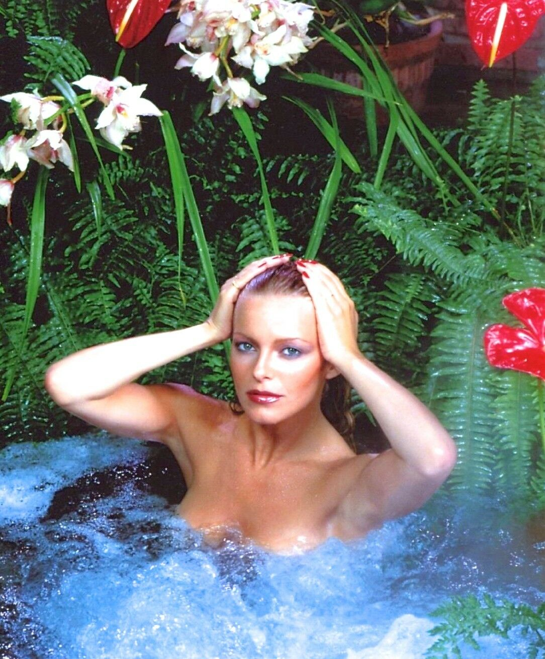 Name:  1980-1989-CHERYL-LADD-color-glamour-classic-photo-Celebrities.jpg Views: 64 Size:  243.7 KB