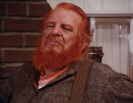 was Denver Pyle ever on perry mason