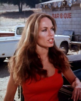 Catherine Bach - Sitcoms Online Photo Galleries