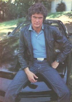 david hasselhoff sitcoms online photo galleries. Black Bedroom Furniture Sets. Home Design Ideas