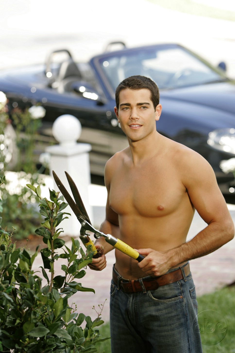Desperate housewives gay cast member