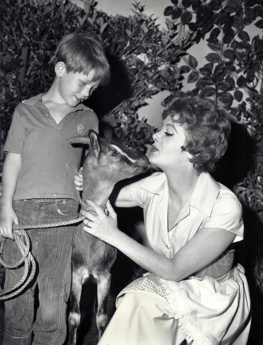 ronny howard amp cara williams sitcoms online photo galleries