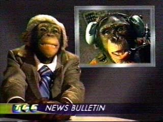 chimpchannelcast