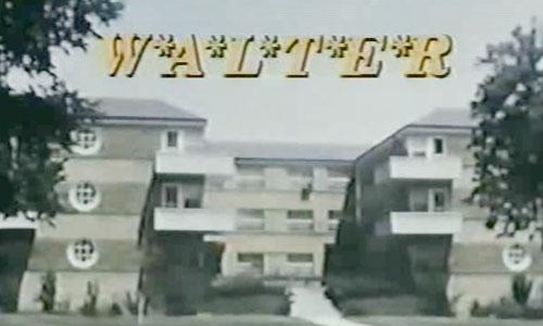 MASH-spinoff-WALTER