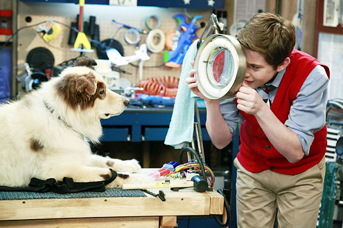 dog-with-a-blog-13lj_benet