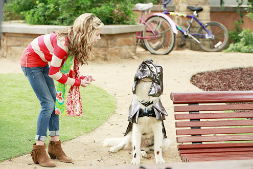 dog-with-a-blog-15G_Hannelius