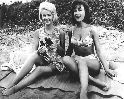 Shelley fabares in a bikini