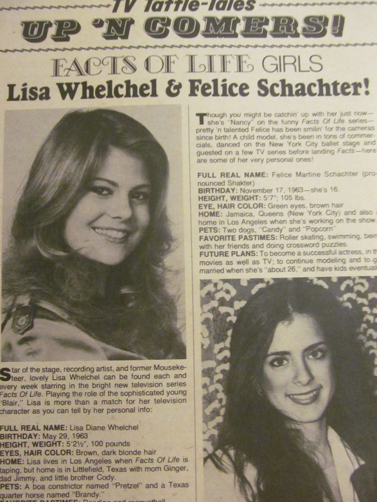 Discussion on this topic: Liza Morrow, felice-schachter/