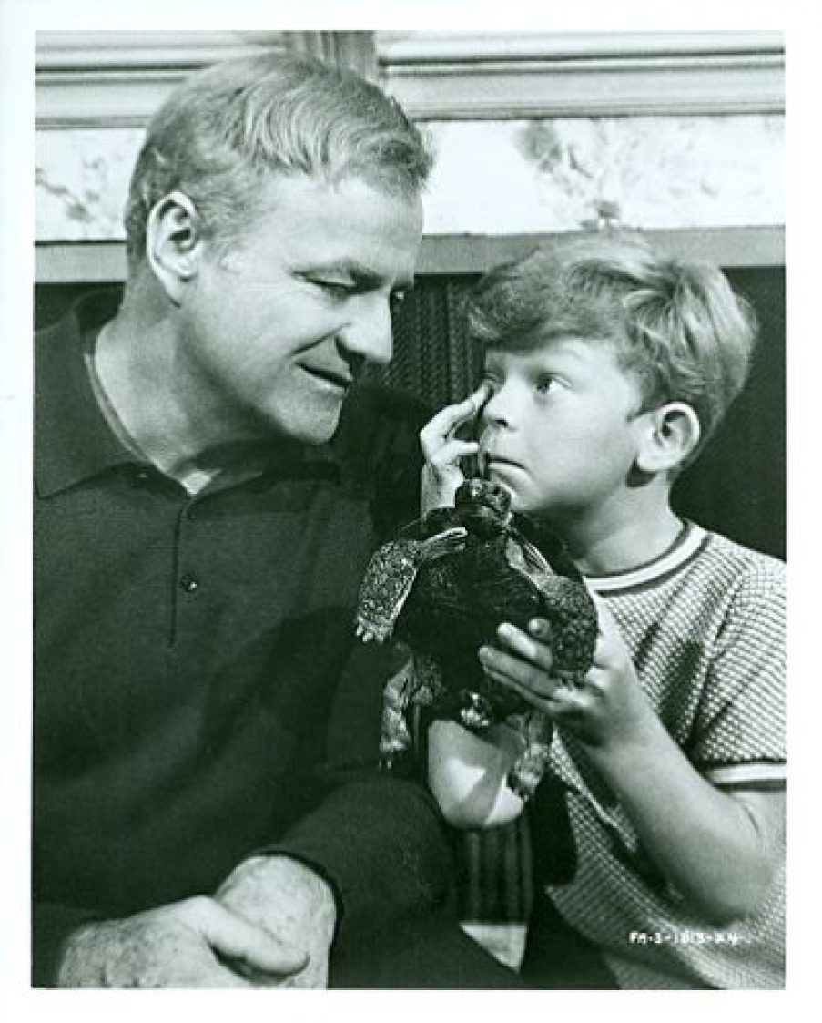 BRIAN_KEITH_JOHNNIE_WHITAKER_WITH_PET_TURTLE_FAMILY_AFFAIR_1968_CBS_TV_PHOTO