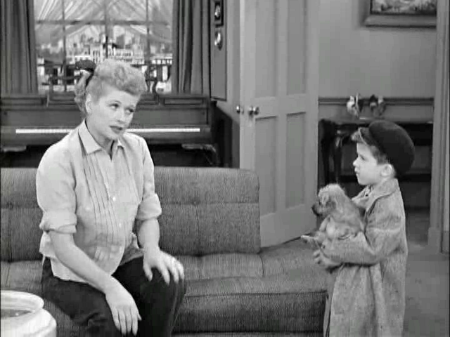 Little ricky gets a dog2 sitcoms online photo galleries for Who played little ricky in i love lucy