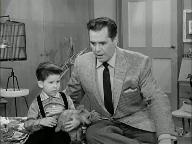 Little ricky gets a dog7 sitcoms online photo galleries for Who played little ricky in i love lucy