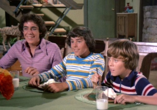 Greg, Peter & Bobby Brady - Sitcoms Online Photo Galleries