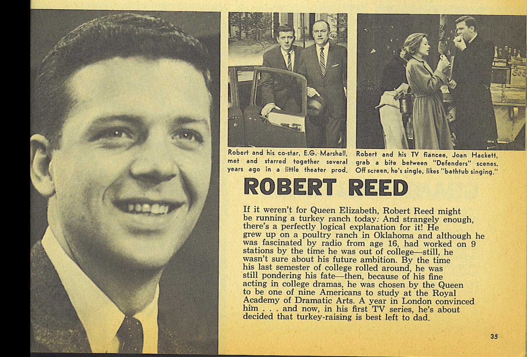robert reed musician