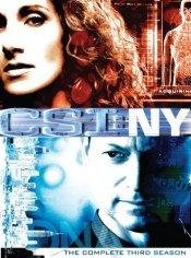 CSI NY: The Complete Third Season