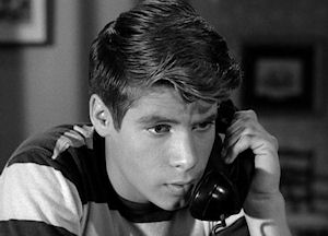 Don Grady on My Three Sons