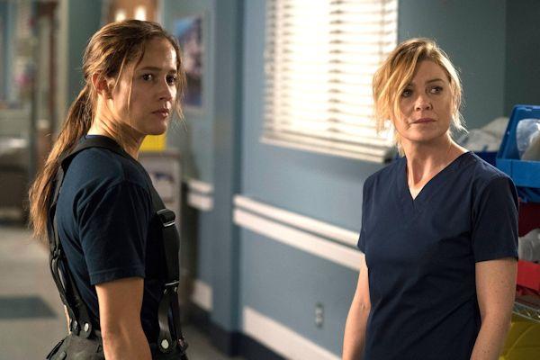 Grey's Anatomy and Station 19