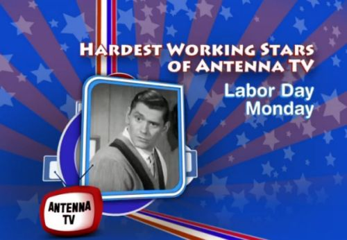 Hardest Working Stars of Antenna TV 2015 Labor Day Marathon