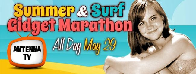 Summer & Surf Gidget Marathon - Antenna TV