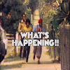 PB's What's Happening & What's Happening Now!! Page